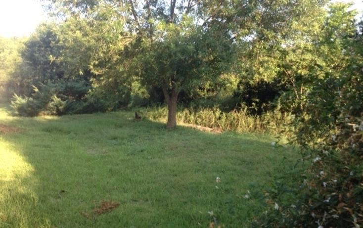 Foto de rancho en venta en  , ciudad allende, allende, nuevo le?n, 1079625 No. 14