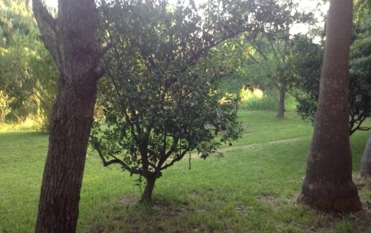Foto de rancho en venta en  , ciudad allende, allende, nuevo le?n, 1079625 No. 19