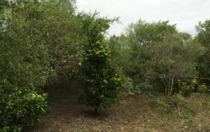 Foto de terreno habitacional en venta en  , ciudad allende, allende, nuevo león, 1484401 No. 09
