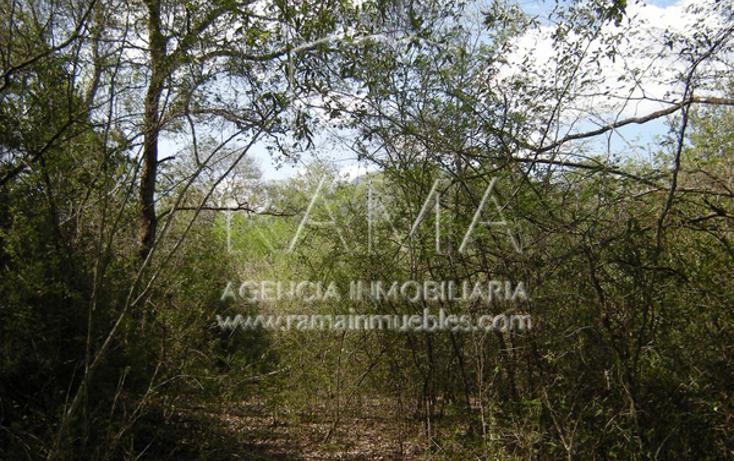 Foto de terreno habitacional en venta en  , ciudad allende, allende, nuevo león, 2716140 No. 11
