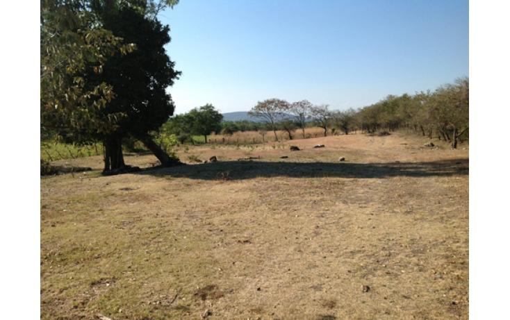 Foto de terreno habitacional en venta en, ciudad ayala, ayala, morelos, 565565 no 02