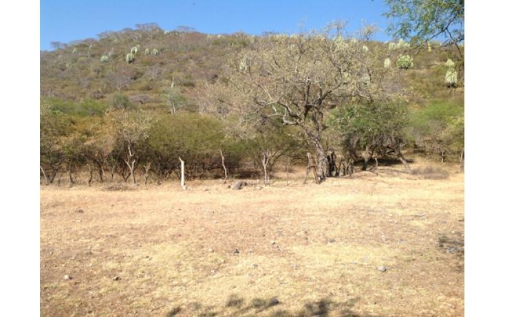 Foto de terreno habitacional en venta en, ciudad ayala, ayala, morelos, 565565 no 03
