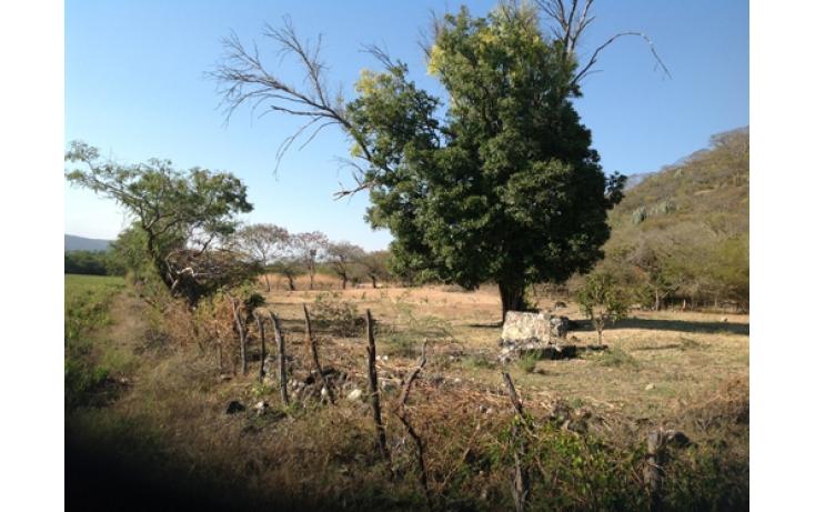 Foto de terreno habitacional en venta en, ciudad ayala, ayala, morelos, 565565 no 04