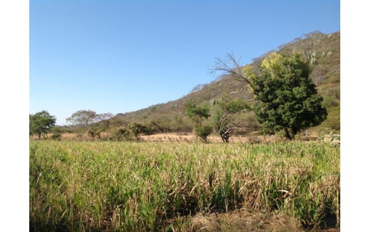 Foto de terreno habitacional en venta en, ciudad ayala, ayala, morelos, 565565 no 07