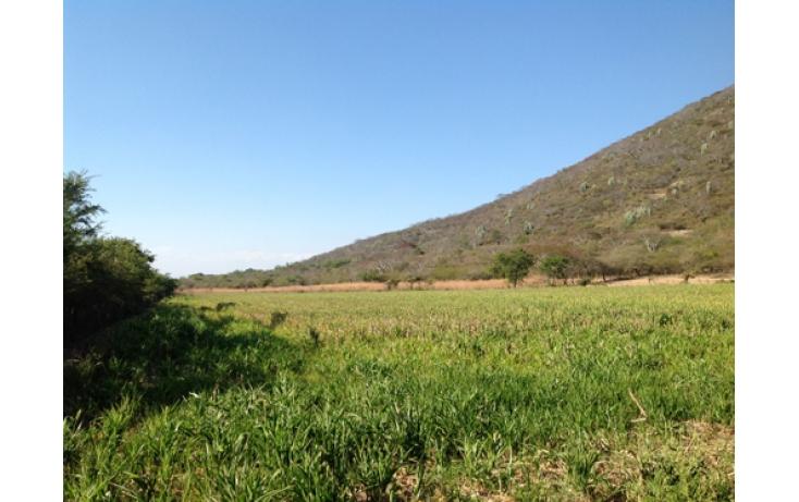 Foto de terreno habitacional en venta en, ciudad ayala, ayala, morelos, 565565 no 08