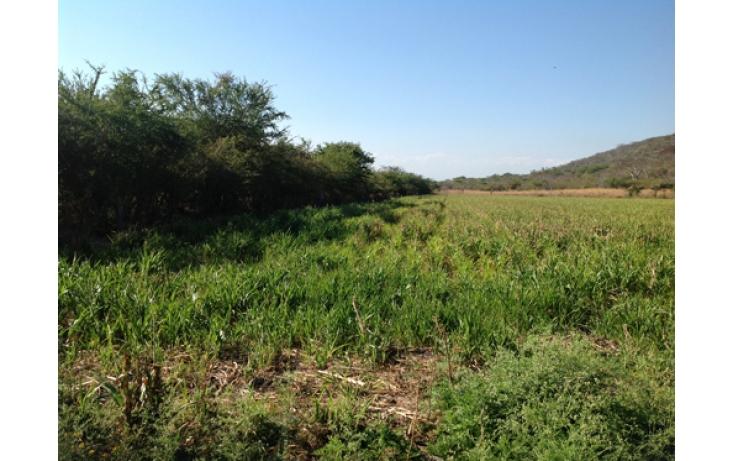 Foto de terreno habitacional en venta en, ciudad ayala, ayala, morelos, 565565 no 09