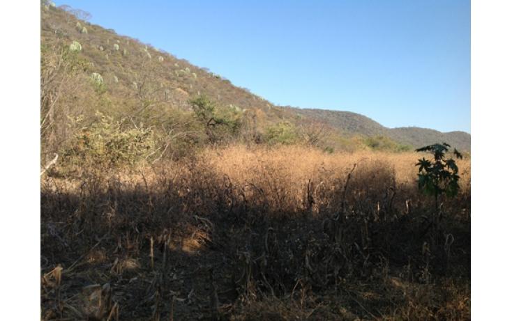 Foto de terreno habitacional en venta en, ciudad ayala, ayala, morelos, 565565 no 16