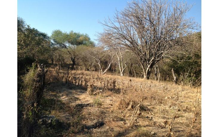 Foto de terreno habitacional en venta en, ciudad ayala, ayala, morelos, 565565 no 17