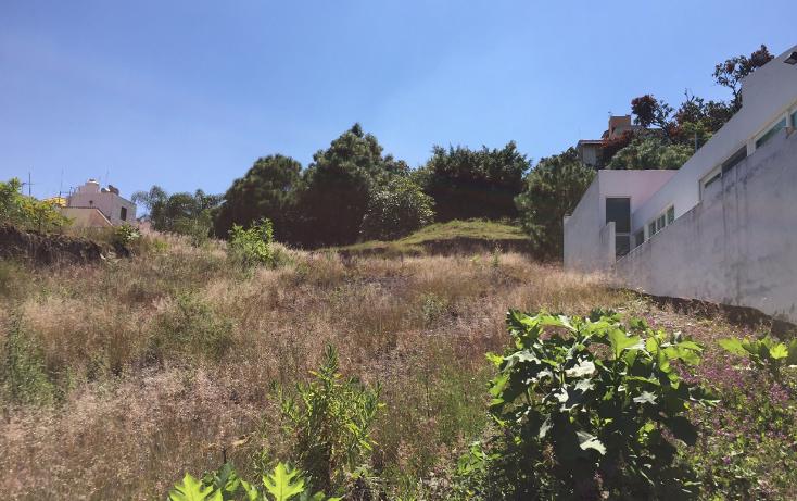 Foto de terreno habitacional en venta en  , ciudad bugambilia, zapopan, jalisco, 1787432 No. 07
