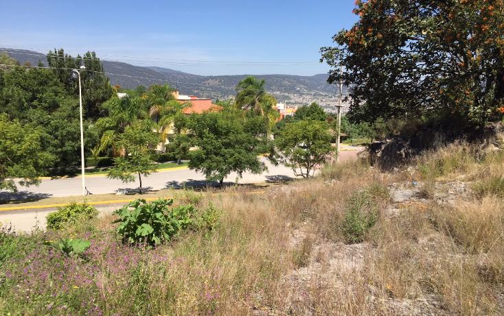 Foto de terreno habitacional en venta en  , ciudad bugambilia, zapopan, jalisco, 1787432 No. 10