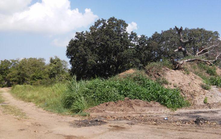 Foto de terreno habitacional en venta en, ciudad cuauhtémoc, pueblo viejo, veracruz, 1136687 no 05