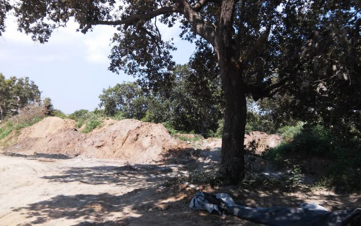 Foto de terreno habitacional en venta en, ciudad cuauhtémoc, pueblo viejo, veracruz, 1303061 no 03