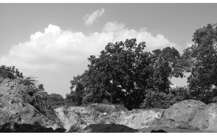 Foto de terreno habitacional en venta en  , ciudad cuauhtémoc, pueblo viejo, veracruz de ignacio de la llave, 1136687 No. 01