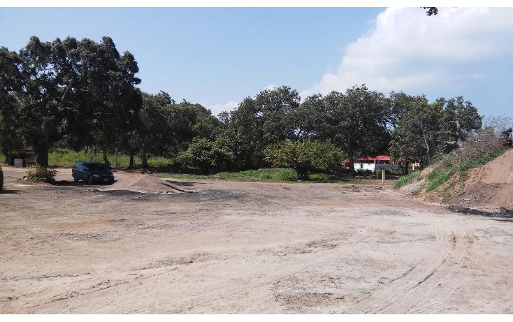 Foto de terreno habitacional en venta en  , ciudad cuauhtémoc, pueblo viejo, veracruz de ignacio de la llave, 1136687 No. 04