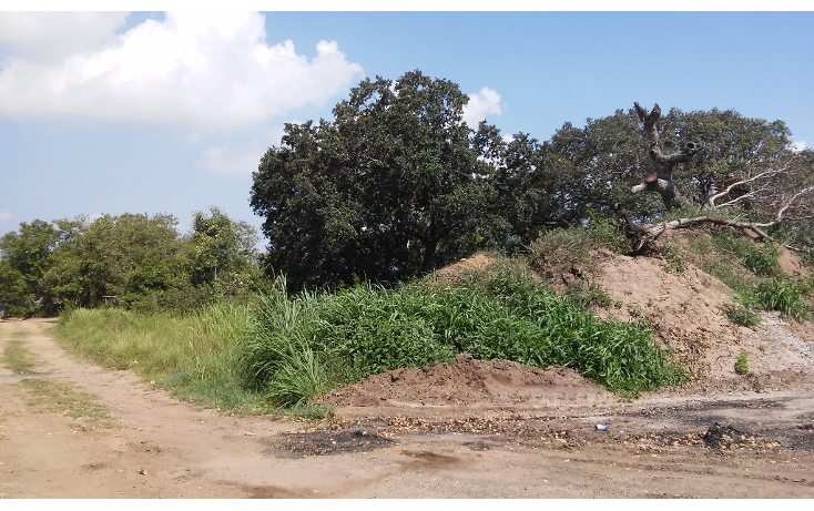 Foto de terreno habitacional en venta en  , ciudad cuauhtémoc, pueblo viejo, veracruz de ignacio de la llave, 1303047 No. 05