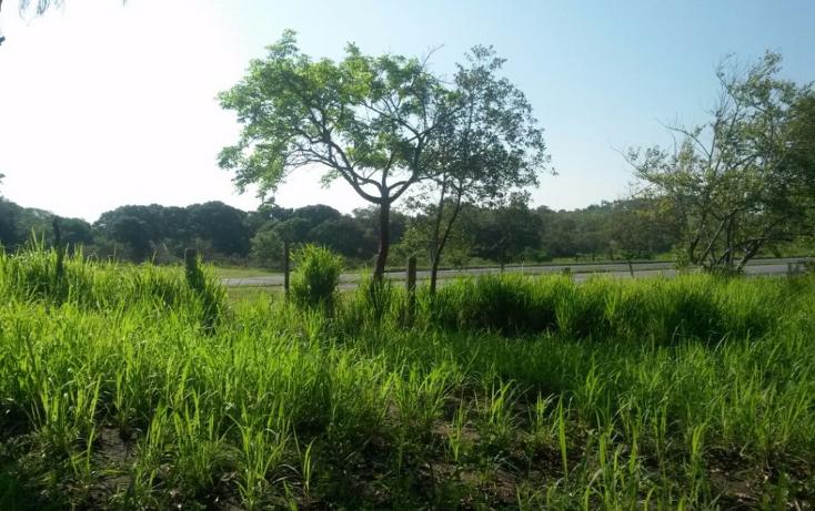 Foto de terreno comercial en venta en  , ciudad cuauht?moc, pueblo viejo, veracruz de ignacio de la llave, 2019932 No. 05