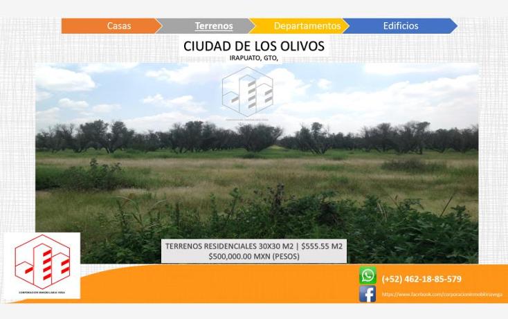 Foto de terreno habitacional en venta en  , ciudad de los olivos, irapuato, guanajuato, 1325959 No. 04