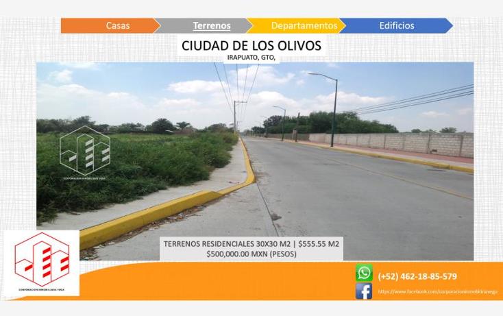 Foto de terreno habitacional en venta en  , ciudad de los olivos, irapuato, guanajuato, 1325959 No. 05