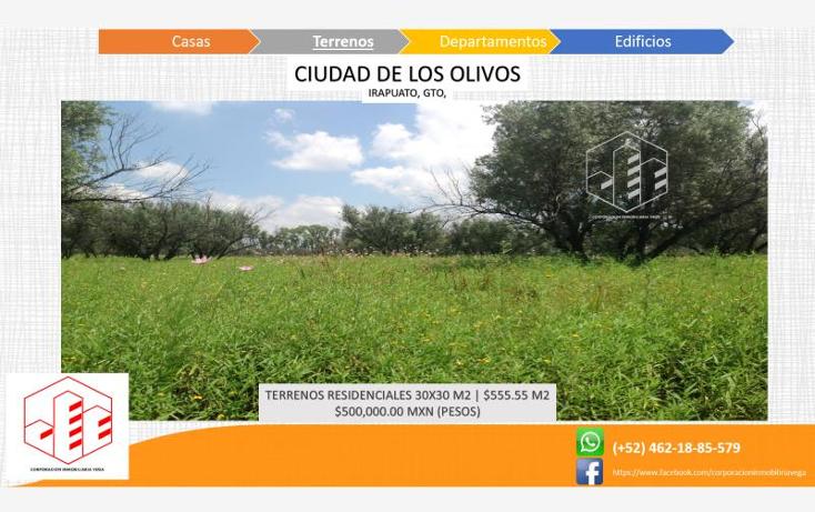 Foto de terreno habitacional en venta en  , ciudad de los olivos, irapuato, guanajuato, 1325959 No. 06