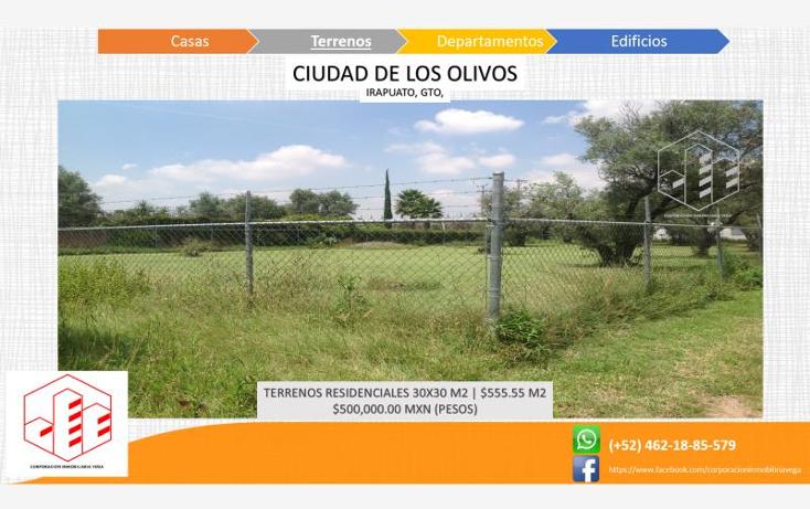 Foto de terreno habitacional en venta en  , ciudad de los olivos, irapuato, guanajuato, 1325959 No. 07
