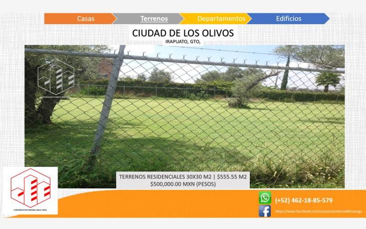 Foto de terreno habitacional en venta en  , ciudad de los olivos, irapuato, guanajuato, 1325959 No. 08