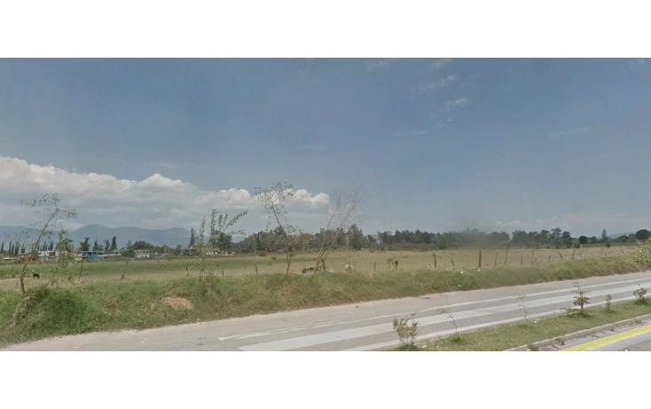 Foto de terreno comercial en venta en  , ciudad guzmán centro, zapotlán el grande, jalisco, 1737184 No. 01