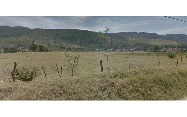 Foto de terreno comercial en venta en  , ciudad guzmán centro, zapotlán el grande, jalisco, 1737184 No. 03