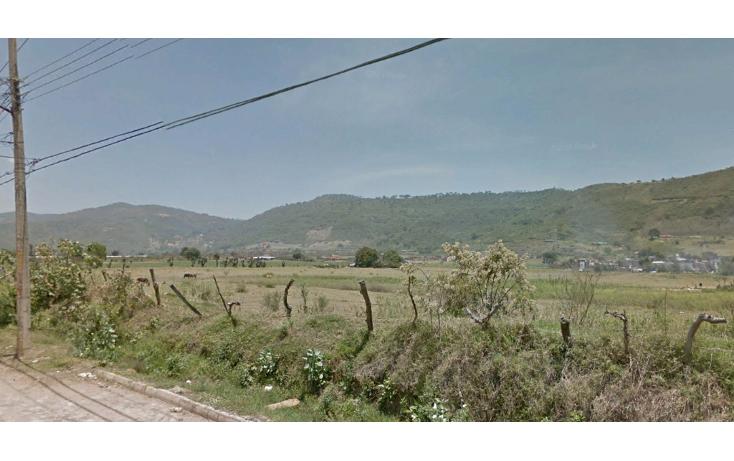 Foto de terreno comercial en venta en  , ciudad guzmán centro, zapotlán el grande, jalisco, 1737184 No. 04