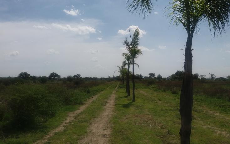 Foto de terreno habitacional en venta en, ciudad industrial, león, guanajuato, 2037910 no 26