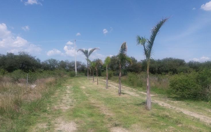 Foto de terreno habitacional en venta en, ciudad industrial, león, guanajuato, 2037910 no 28