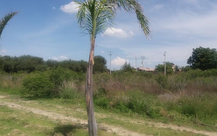 Foto de terreno habitacional en venta en, ciudad industrial, león, guanajuato, 2037910 no 31