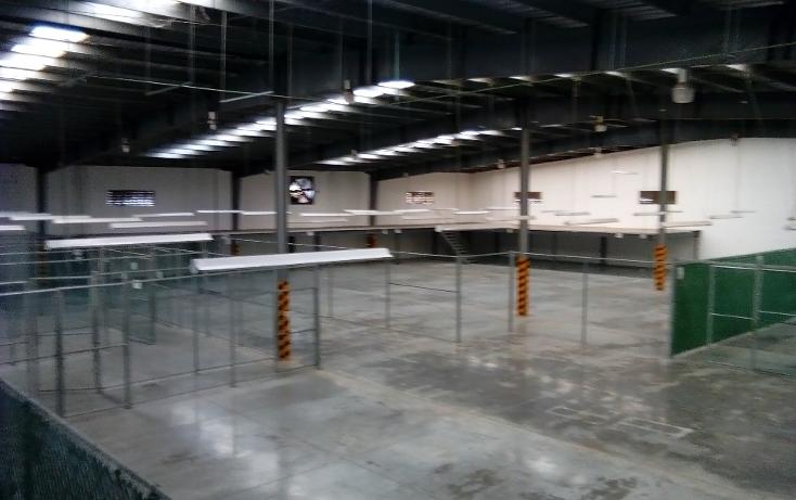 Foto de nave industrial en renta en  , ciudad industrial, m?rida, yucat?n, 1042441 No. 06