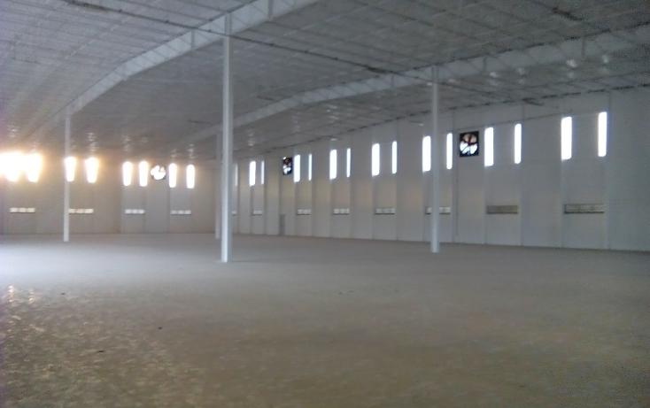 Foto de nave industrial en renta en  , ciudad industrial, mérida, yucatán, 1067167 No. 02