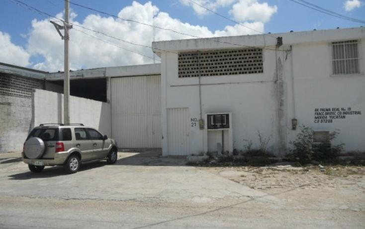 Foto de nave industrial en renta en  , ciudad industrial, mérida, yucatán, 1177669 No. 03