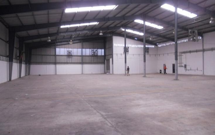 Foto de nave industrial en renta en  , ciudad industrial, mérida, yucatán, 1177669 No. 10