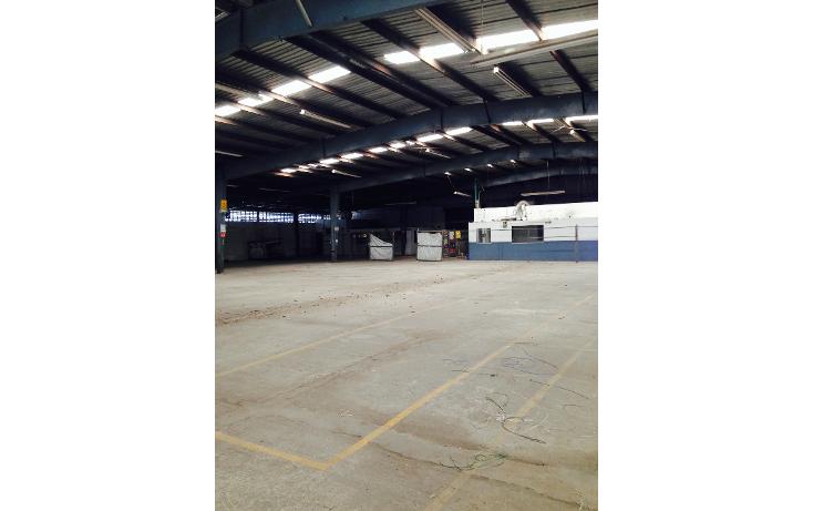 Foto de nave industrial en renta en  , ciudad industrial, mérida, yucatán, 1259173 No. 10