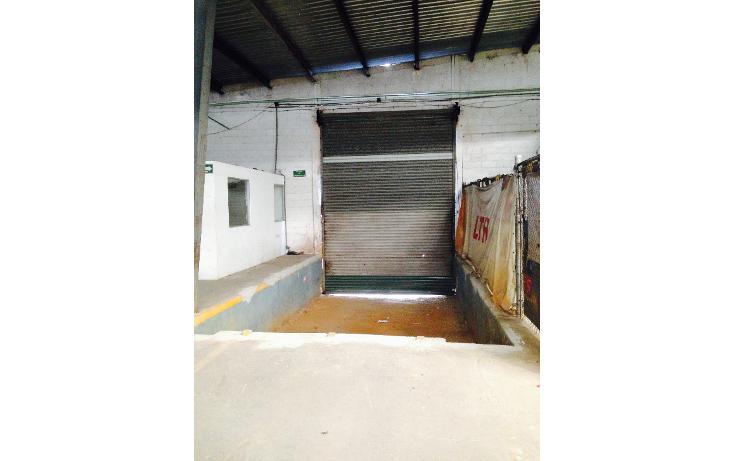 Foto de nave industrial en renta en  , ciudad industrial, mérida, yucatán, 1259173 No. 13