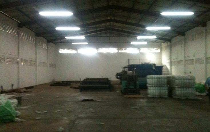 Foto de nave industrial en renta en  , ciudad industrial, mérida, yucatán, 1343399 No. 02