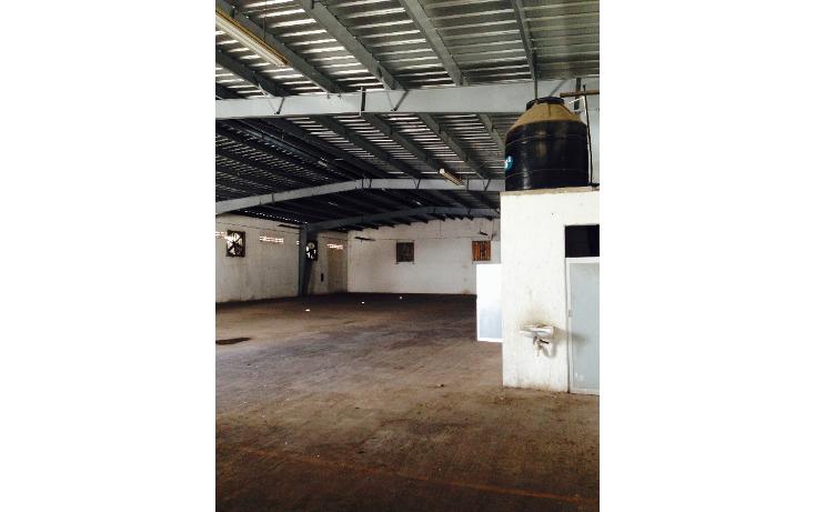 Foto de nave industrial en renta en  , ciudad industrial, mérida, yucatán, 1477691 No. 04