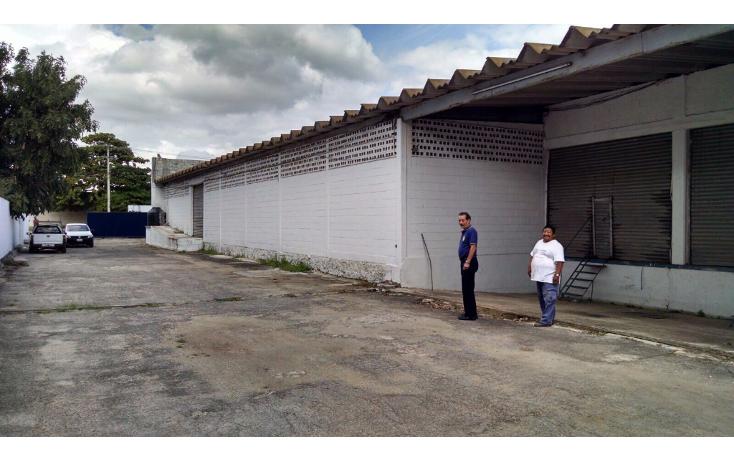 Foto de local en venta en  , ciudad industrial, mérida, yucatán, 1557520 No. 10