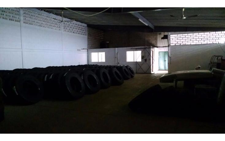 Foto de local en renta en  , ciudad industrial, mérida, yucatán, 1606646 No. 03