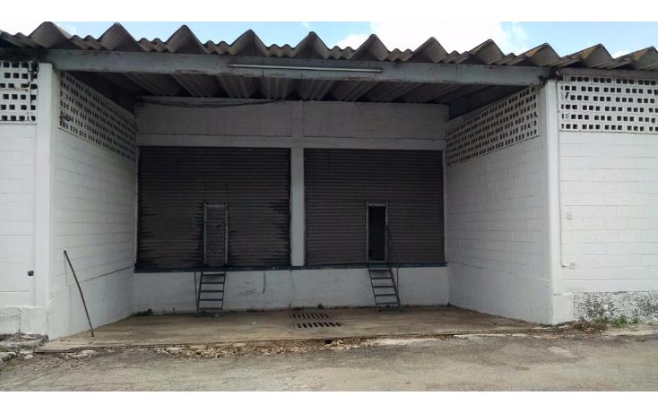 Foto de local en renta en  , ciudad industrial, mérida, yucatán, 1606646 No. 08
