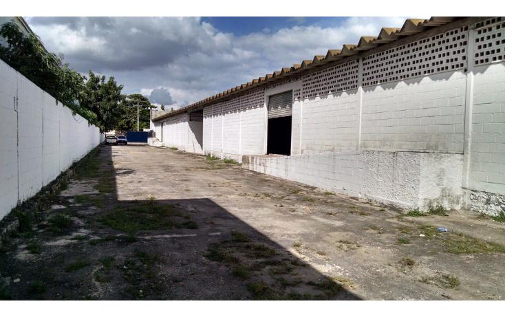 Foto de local en renta en  , ciudad industrial, mérida, yucatán, 1606646 No. 12