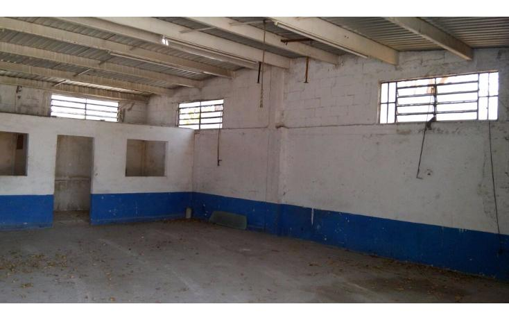 Foto de nave industrial en venta en  , ciudad industrial, mérida, yucatán, 1827041 No. 05