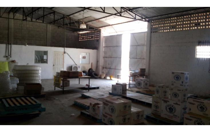 Foto de nave industrial en venta en  , ciudad industrial, mérida, yucatán, 1827041 No. 21