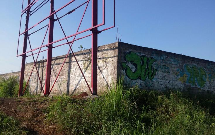 Foto de terreno habitacional en venta en  , ciudad industrial, tepic, nayarit, 1232083 No. 07