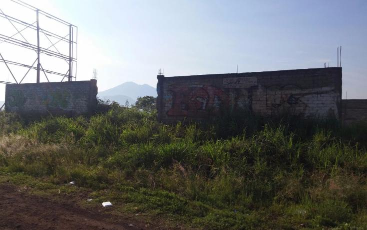 Foto de terreno habitacional en venta en  , ciudad industrial, tepic, nayarit, 1232083 No. 08