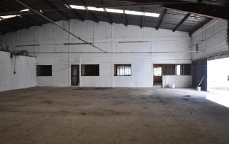 Foto de nave industrial en renta en  , ciudad industrial, torre?n, coahuila de zaragoza, 2011622 No. 10