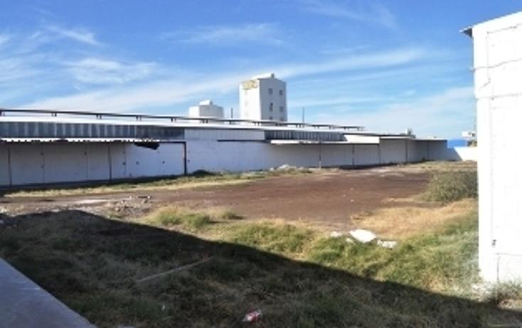 Foto de nave industrial en renta en  , ciudad industrial, torre?n, coahuila de zaragoza, 2011622 No. 13