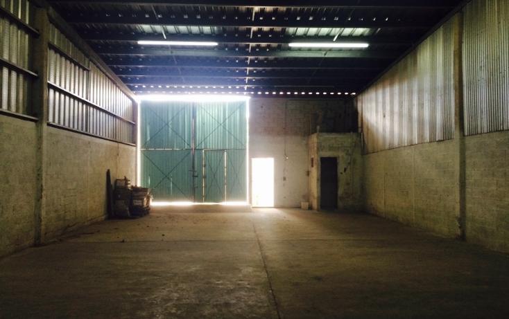 Foto de nave industrial en renta en  , ciudad industrial, umán, yucatán, 1146105 No. 01